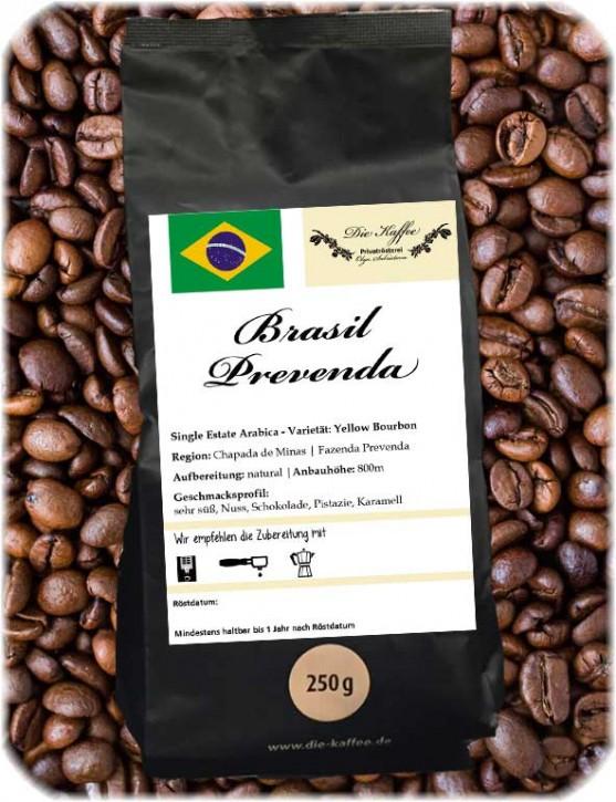 Brasil Yellow Bourbon - Prevenda 1000g / ganze Bohne