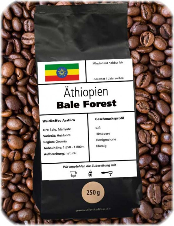 Äthiopien Bale Forest - natural