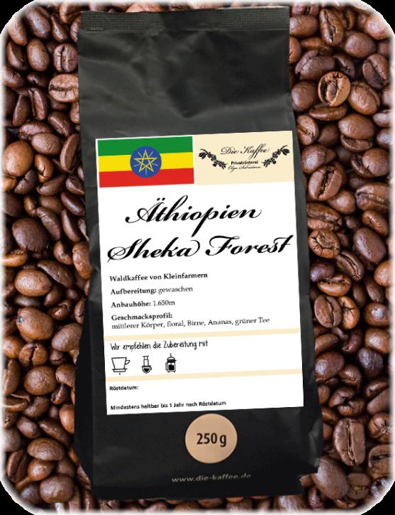 """Äthiopien Sheka Forest """"Engida"""""""